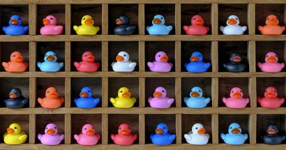 Ducks crop.jpg